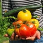 person holding vegetables from the garden