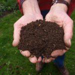 Hands holding garden compost