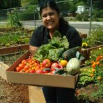 Harvesting and Preserving Your Garden