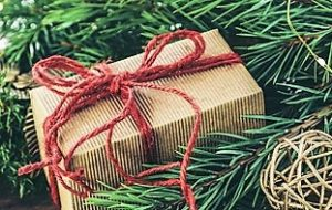 Holiday gift and pine boughs