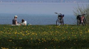couple biking and picnicing