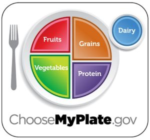 Nutritional Guidelines from my plate