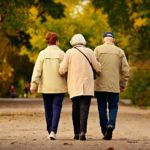 Back view of three elderly people walking together