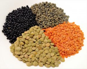Pile of dry lentils, red ,green\brown, black and French green