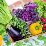 garden vegetables such as lettuce, cabbage, bell pepper, radishes and eggplant