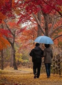 couple on a walk through autumn leaves