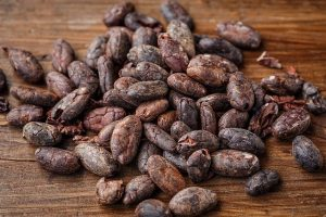 Cocoa beans from the Cacao Tree
