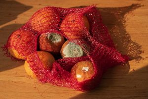 moldy bag of oranges is food waste