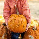 child harvesting a pumpkin